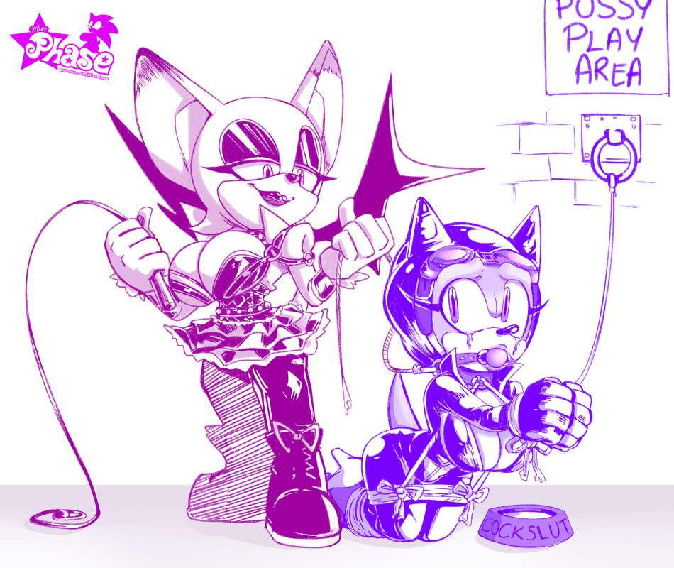 sonic amy and rouge x Breath of the wild zora girl